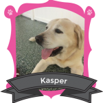 Our May Camper of the Month is Kasper