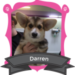 Our June Camper of the Month is Daren