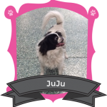 Our December Camper of the Month is JuJu