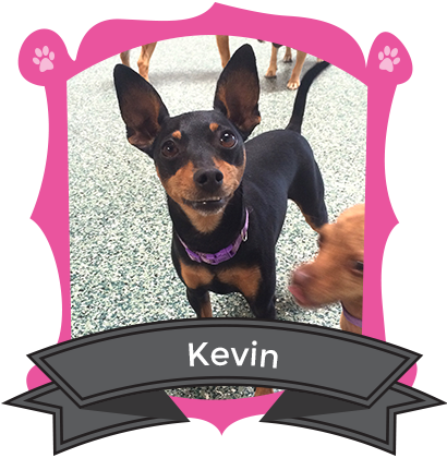 October Camper of the Month is Kevin