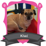 April Camper of the Month is Kiwi