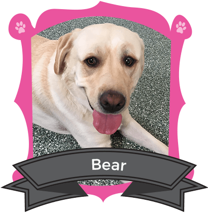 May Camper of the Month is Bear