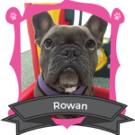 June Camper of the Month is Rowan