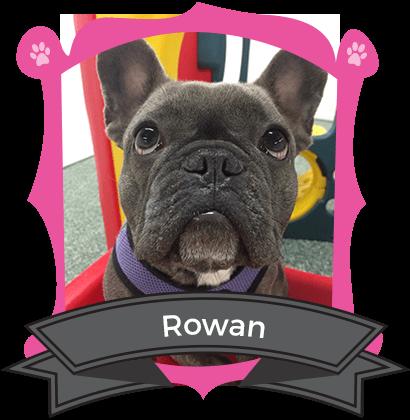 June Camper of the Month is Rowan