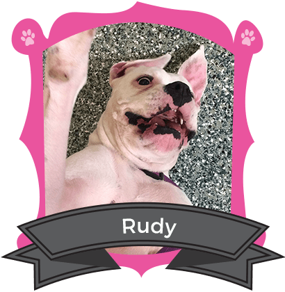 September Camper of the Month is Rudy