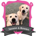 May Camper of the Month: Jaxson & Bowen