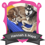 July Campers of the Month: Hannah & Maya