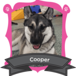 January Camper of the Month is Cooper