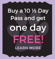 Buy a 10 Half Day Pass and get 1 Day Free!