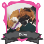 Big Dog July/August Camper of the Month is Duke