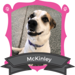 Big Dog November Camper of the Month is McKinley