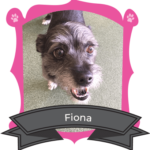 Small Dog May Camper of the Month is Fiona