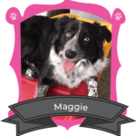 July Camper of the Month is Maggie