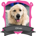 September Camper of the Month is Oliver