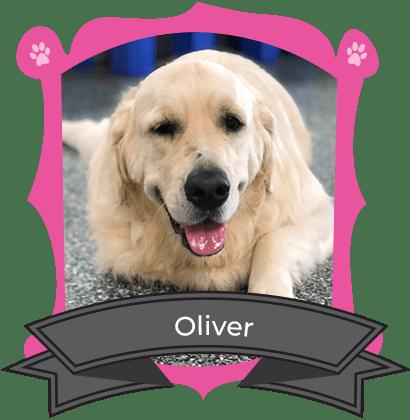 September Camper of the Month is Oliver
