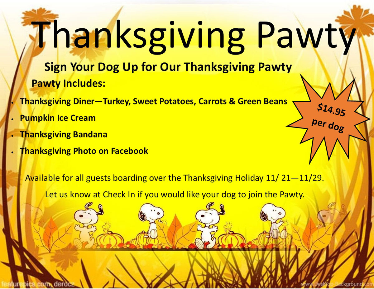 Thanksgiving Pawty