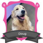 November Camper of The Month Is Doug