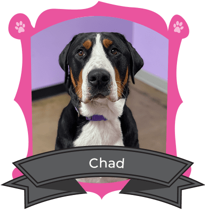 January Camper of The Month Is Chad
