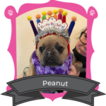 May Camper of The Month Is Peanut